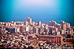 Arabic Gulf