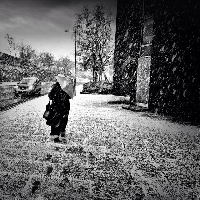 'Morning Snow'