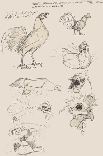 "4.11.13 - ""The Natural History of the Chicken"" studies"