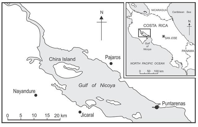 奇拉島位置