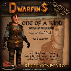 Auction Item: One of a Kind Dwarfin Rinn Rockbeard