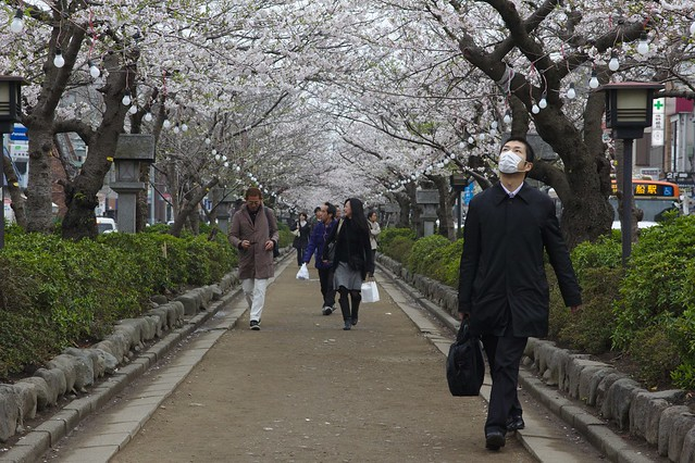0465 - Kamakura