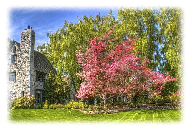 Image Result For Home And Garden Show Washingtona