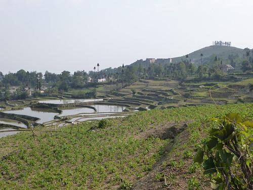 Yunnan13-Yuanyang 2 (4)