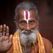 Inde: le saddhu de Jaisalmer (Rajasthan). by claude gourlay