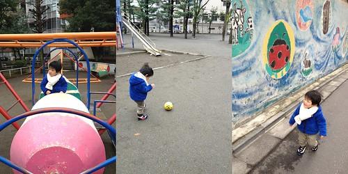 朝散歩 2013/2/7
