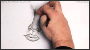 draw a human nose and mouth