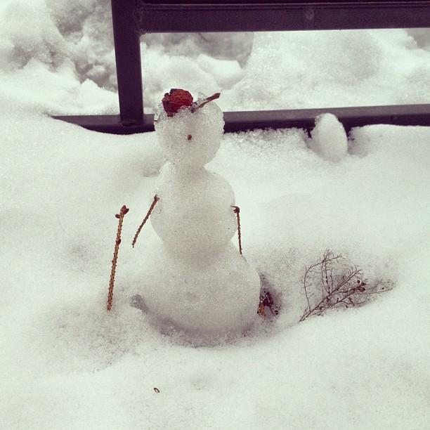 Маленький снеговичок у нас на прогулке