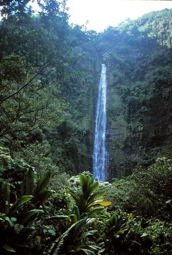 IMG_00841_Waimoku_Falls_Hana_Maui