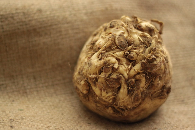 celeriac, celery root, how to make celeriac