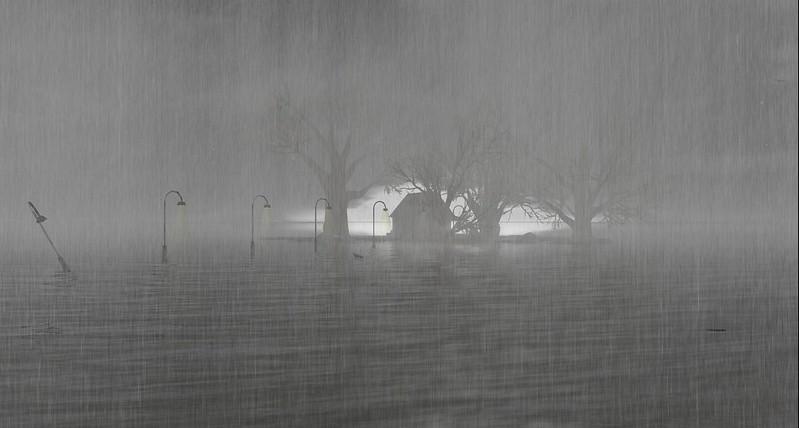2304 Rain