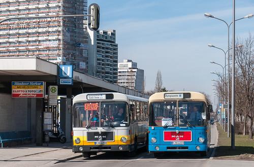 Zweimal Standard-I-Bus von MAN: Der H44 trifft Wagen 4632