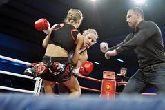 striking combat sports, professional boxing, individual sports, contact sport, sports, combat sport, muay thai, shoot boxing, kickboxing, sanshou, strike, boxing,