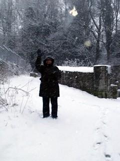 Dot, snow