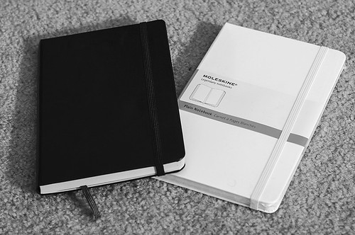 A Tale of Two Moleskines