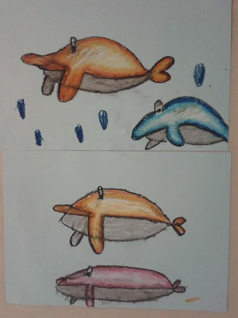 dolphins again