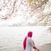 dreaming, cherry blossom festival, dc [L1008389]
