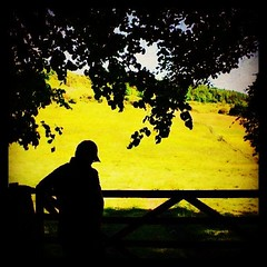 I'm still waiting for you, but on this side of the fence! #wait #love #lost #friendship #childhood #girlfriend #breakup #girl #guy #greens #farm #uk #trees #2013 #missyou