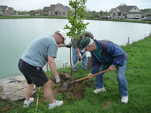 planting trees along Briar Lake through the Alliance TreeVitalize Program