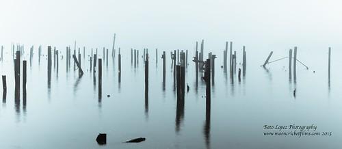 fog2 (1 of 1)