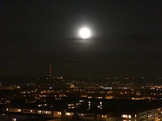 Qualmigmatte Rotglut säumt den Himmel, leuchtend taucht der Mond empor, die Landschaft träumt vom Tage, ist schlummerüberhaucht 0246