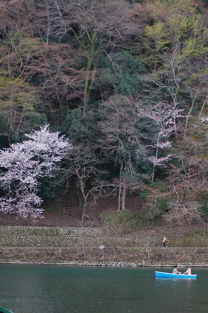 0826 - Arashiyama bosque bambú