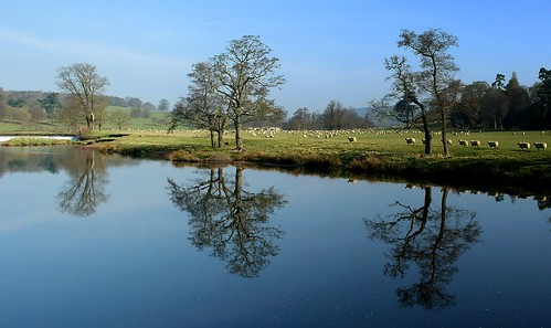 Derwent reflections