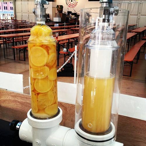 湘南ゴールドランドル始動!果実で満たしたフィルターを通して注ぎます。
