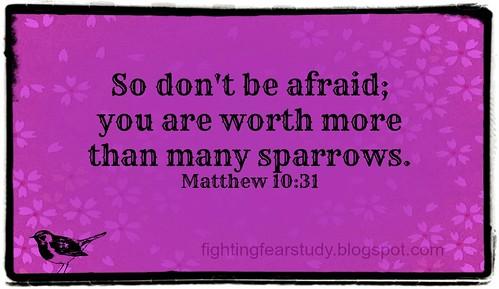 Matthew 10 31
