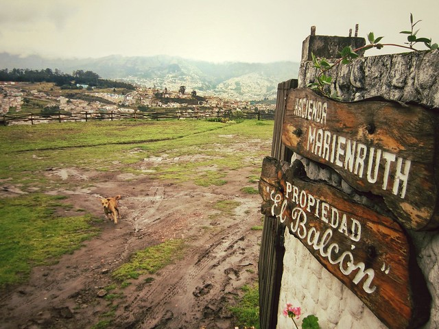 Homestay overlooking Quito