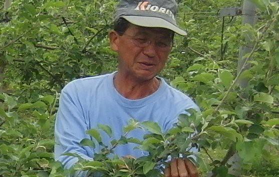 りんごやSUDA果樹園風景2_拡大