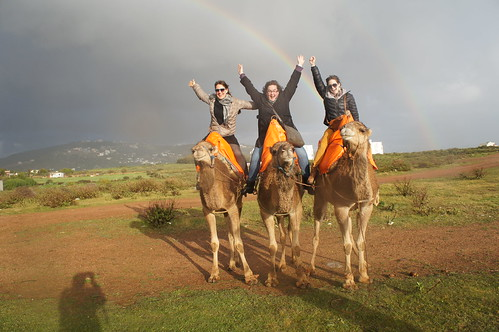 Double Rainbow Camel Ride
