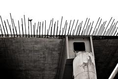 Bridge construction 1