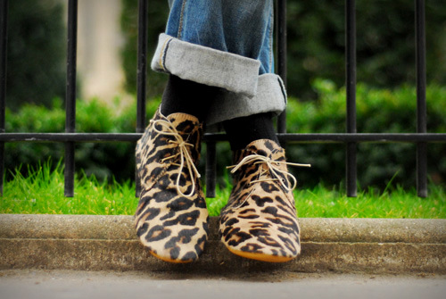 derbies leopard anniel