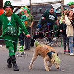 2013 Bergen County St. Patrick`s Day Parade, Bergenfield, New Jersey