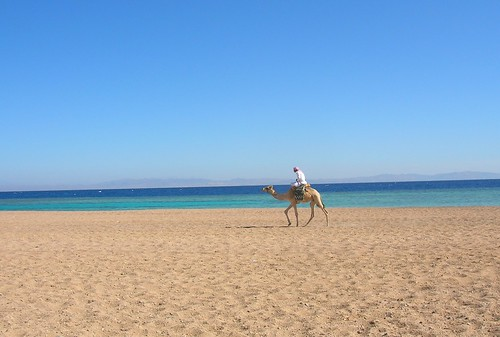 Backpacking travel in Dahab, Egypt