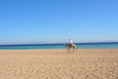 Backpacking travel in Dahab, Egypt