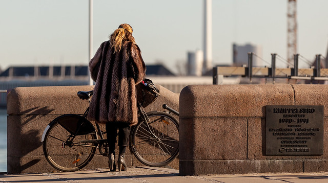Copenhagen Bikehaven by Mellbin - Bike Cycle Bicycle - 2013 - 0668