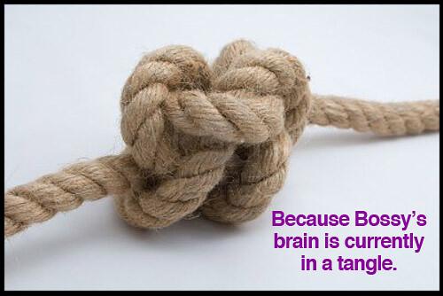 knot-iambossy