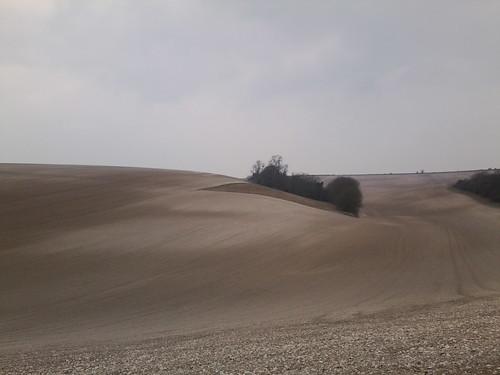 Sussex Sahara