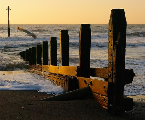 sea beach sunrise sand pentax timber gull devon groyne teignmouth k20d