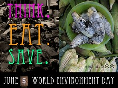 Kudos @UNEP Think. Eat. Save. World Environment Day is June 5 #wed2013 #thinkeatsave
