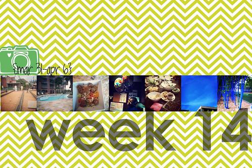 week 14 title