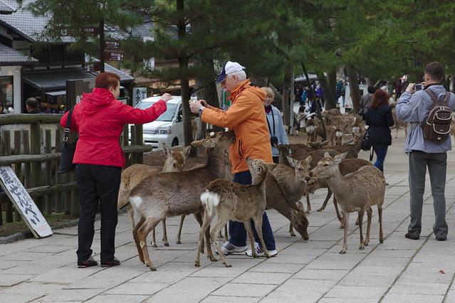 1054 - Nara