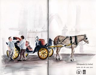 Coches de caballos en la Catedral