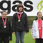 2010 CH Erdgas