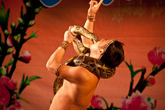 Crazy Snake Guy at Hoan Kiem Lake 2013 New Year's Eve Celebaration - Hanoi, Vietnam