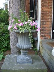 Flower Urns 2013