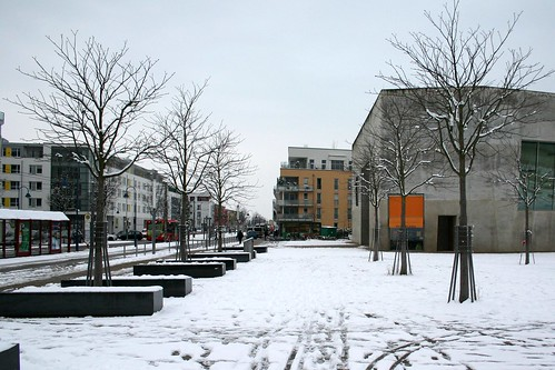 Snowy M.v.R.-place II
