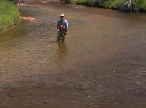 Wet fly swing